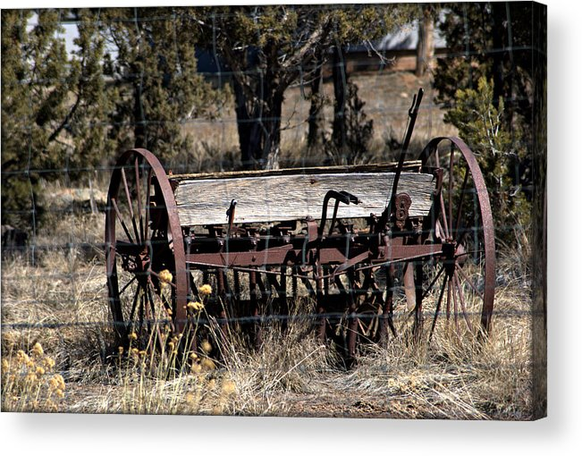 Wheat Acrylic Print featuring the photograph Horse Drawn Planter by John Wright