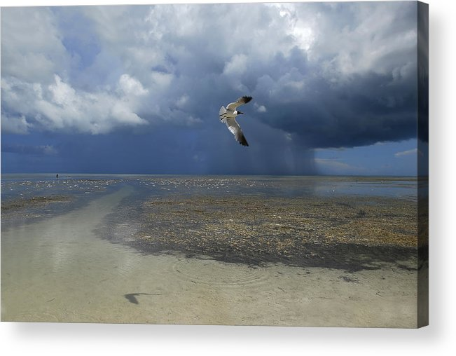 Color Image Acrylic Print featuring the photograph Rain Falls From A Huge Cloud by Raul Touzon