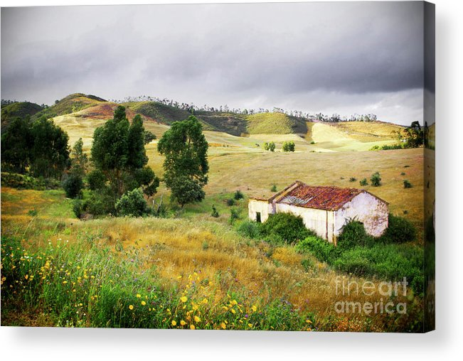 Calm Acrylic Print featuring the photograph Ruin In Countryside by Carlos Caetano
