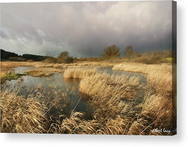 Swampland Acrylic Print featuring the photograph Swampland by Robert Lacy