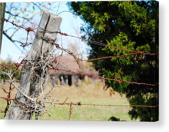 Farm Acrylic Print featuring the photograph Texas Safety Net by Lisa Moore