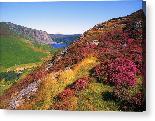 Clear Sky Acrylic Print featuring the photograph Wicklow Way, Co Wicklow, Ireland Long by The Irish Image Collection