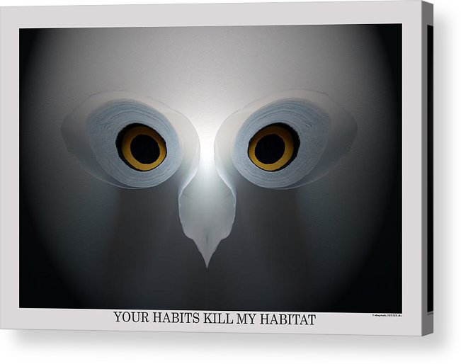 Living Green Thinking Green Going Green Lifes Habits Environmental Destruction Habitat Birds Owls Trees Toilet Paper Products Acrylic Print featuring the photograph Your Habits Kill My Habitat by George Olney