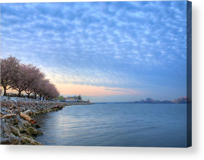 Cherry Blossoms Blossom Washington Dc Potomac River Sunrise Sunset Joint Base Anacostia Bolling Afb Alexandria Va Virginia Acrylic Print featuring the photograph Down River by JC Findley