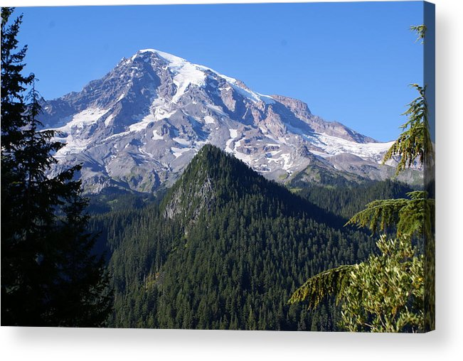 National Park Acrylic Print featuring the photograph Mount Rainier by Sonja Anderson