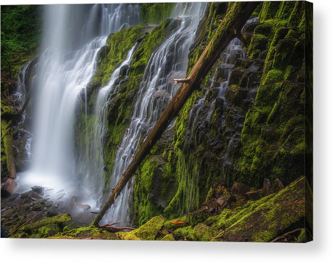 Water Acrylic Print featuring the photograph Proxy Falls by Cat Connor