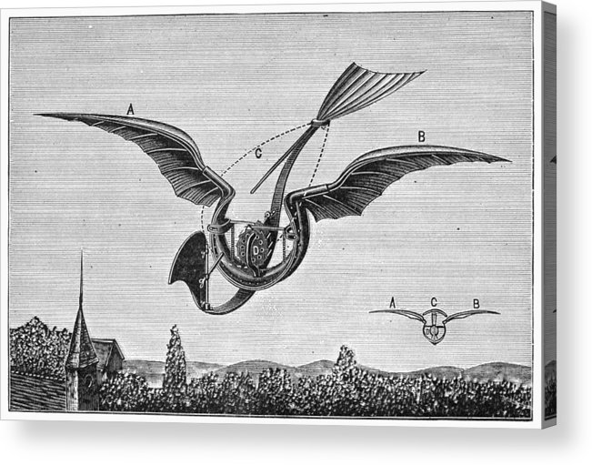 1870 Acrylic Print featuring the photograph Trouv�s Ornithopter by Granger