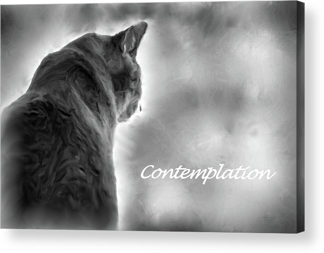 Philosophy Acrylic Print featuring the mixed media Contemplation Monochrome by Aliceann Carlton