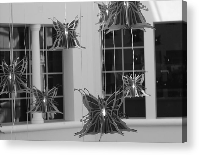 Black And White Acrylic Print featuring the photograph Hanging Butterflies by Rob Hans