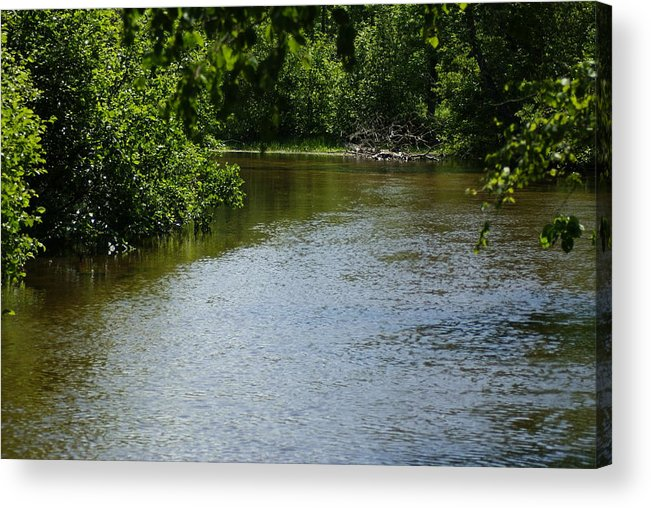 River Acrylic Print featuring the photograph A Bend In The River by Ron Read