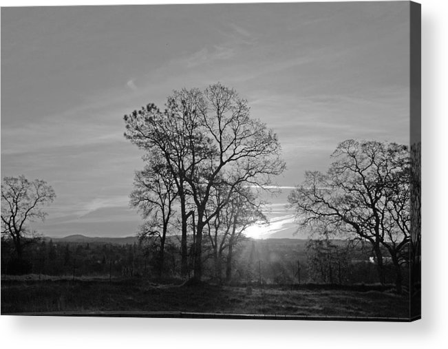 Landscape Acrylic Print featuring the photograph A. M. by M Ryan