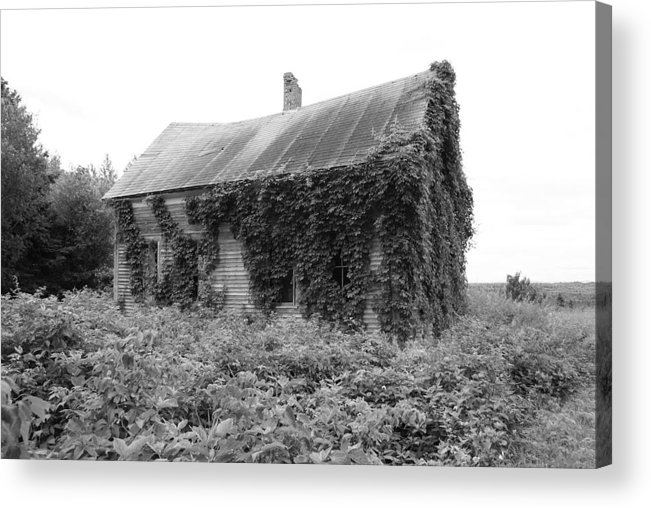 Abandoned Acrylic Print featuring the photograph Abandoned by Lisa Hebert