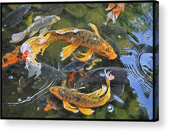Digital Painting Acrylic Print featuring the painting Abundance by Ron Morecraft