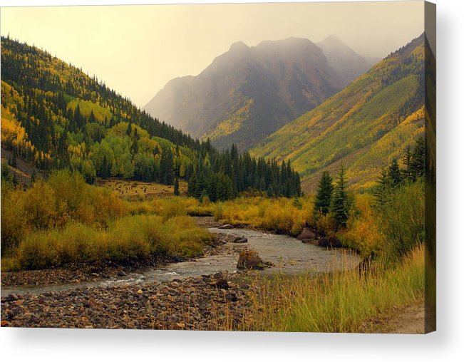 Colorado Acrylic Print featuring the photograph Alpine Loop Fall by Marty Koch