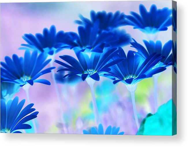 Abstract Acrylic Print featuring the digital art Bluemination by Robin Webster