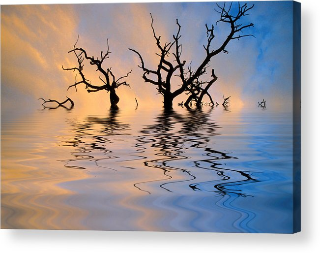 Original Art Acrylic Print featuring the photograph Slowly Sinking by Jerry McElroy