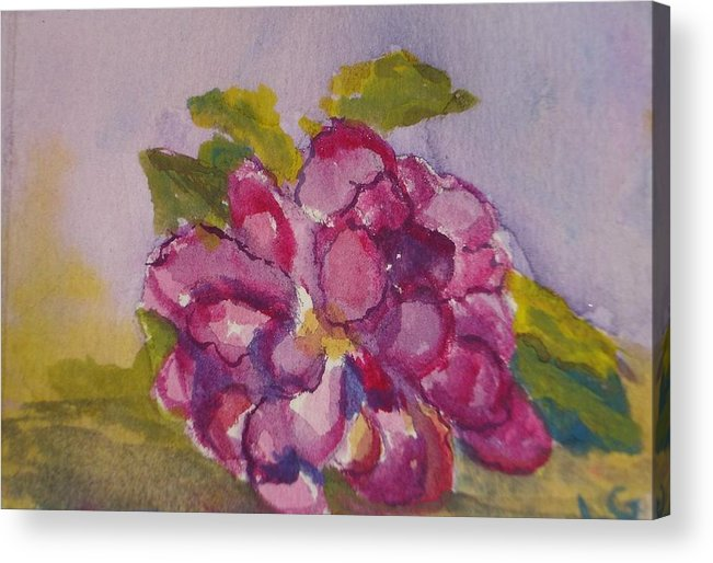 Flower Acrylic Print featuring the painting Camellia by Lessandra Grimley