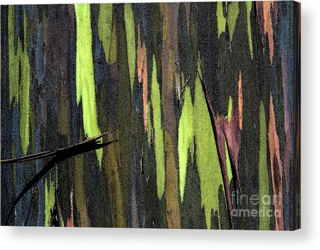 Abstract Acrylic Print featuring the photograph Camouflage by Carl Ellis