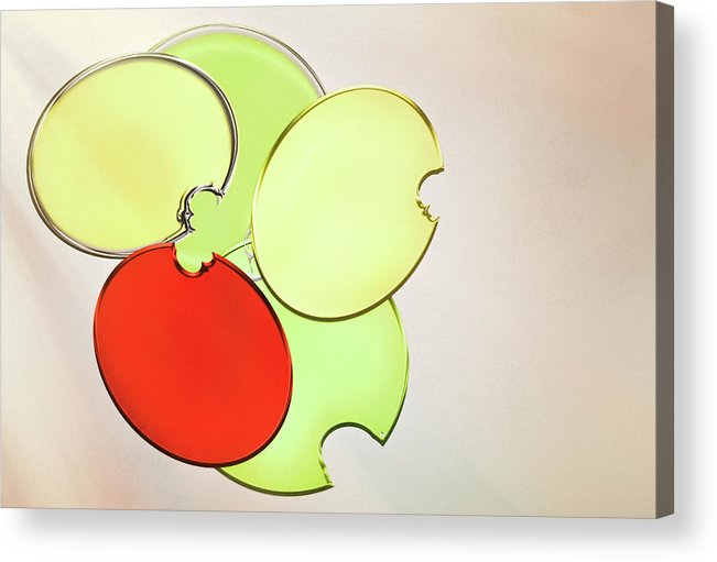 Circles Acrylic Print featuring the photograph Circles Of Red, Yellow And Green by Donna Lee