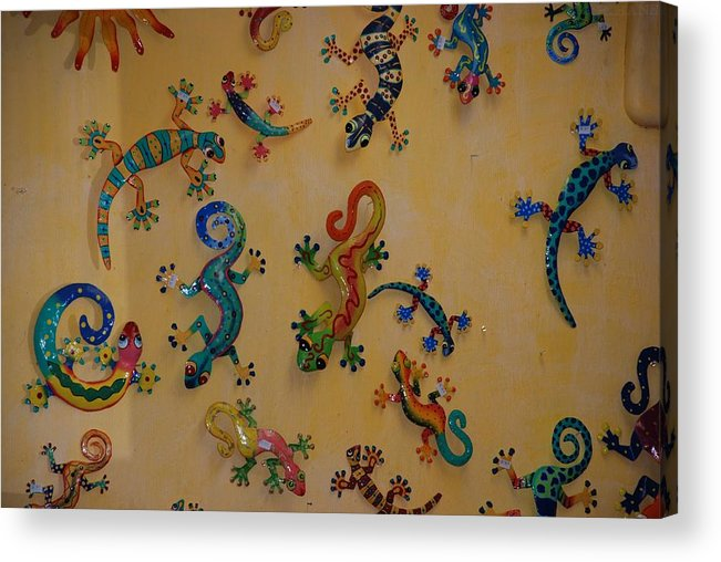 Pop Art Acrylic Print featuring the photograph Color Lizards On The Wall by Rob Hans