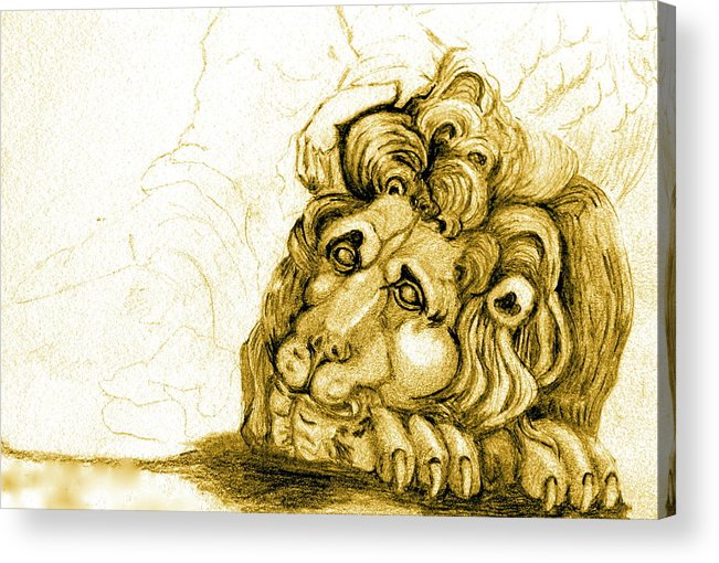 Lion Acrylic Print featuring the drawing Cordoba Lion by Dan Earle