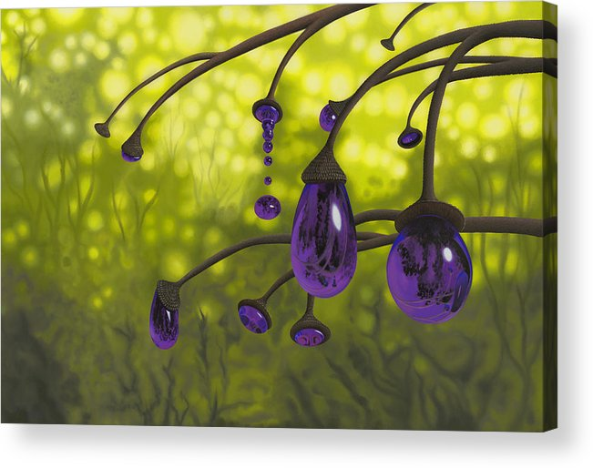 Tree Acrylic Print featuring the painting Cyphomandra Vitra by Patricia Van Lubeck
