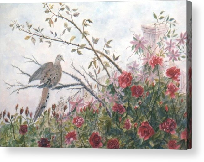 Dove; Roses Acrylic Print featuring the painting Dove And Roses by Ben Kiger