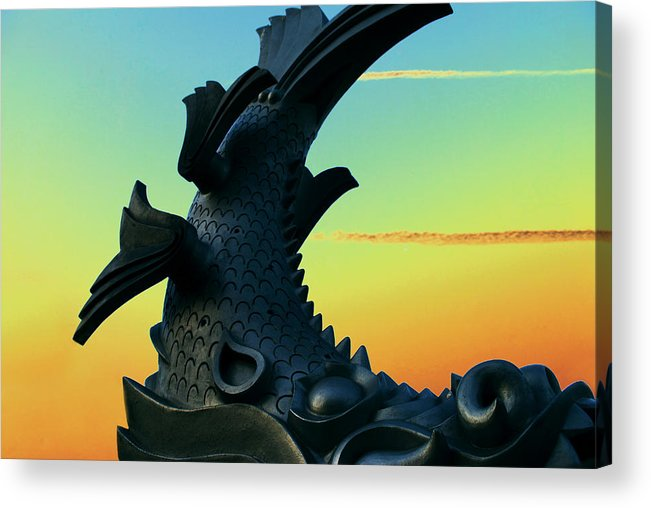 Fish Acrylic Print featuring the photograph Dragon Fish by Courtney Lively