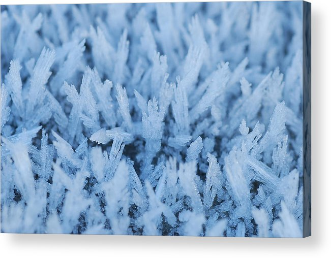 Landscape Snow Acrylic Print featuring the photograph Early Morning Frost by Stephen Leckemby