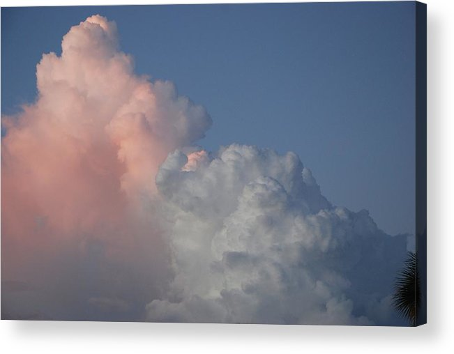 Clouds Acrylic Print featuring the photograph Elephant Cloud by Rob Hans