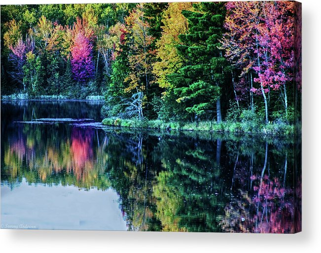 Fall Acrylic Print featuring the photograph Fall Color Explosion by Tommy Anderson