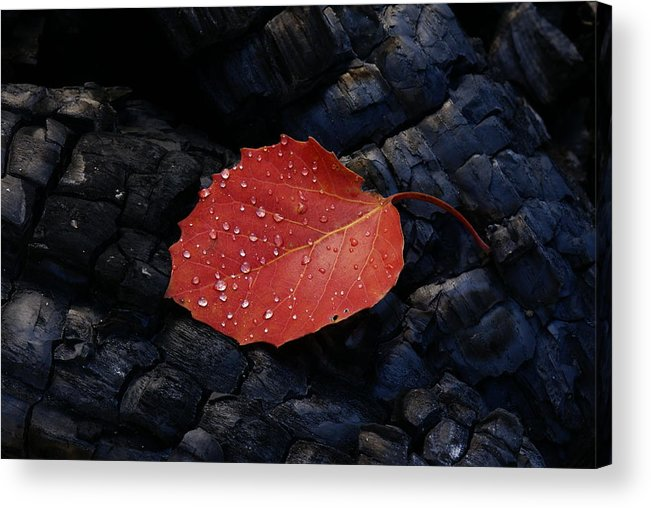 Wood Acrylic Print featuring the photograph Fireplace by Andreas Freund