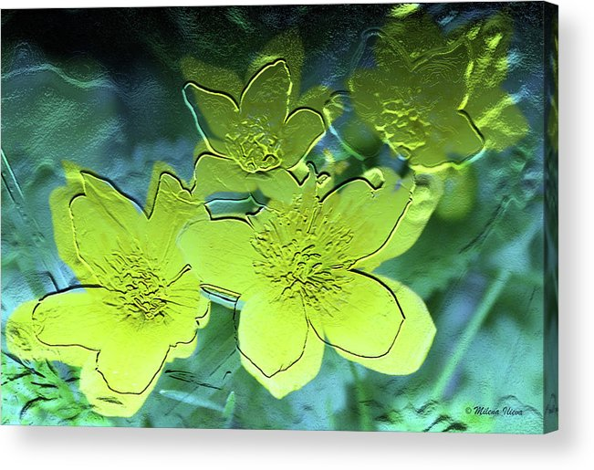 Blue Acrylic Print featuring the digital art Floral Relief by Milena Ilieva