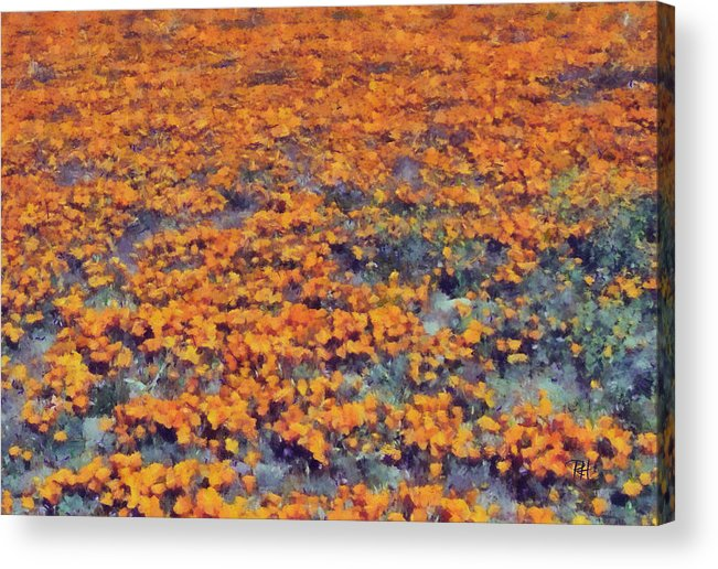 Landscape Acrylic Print featuring the painting Flower Hill by Russ Harris