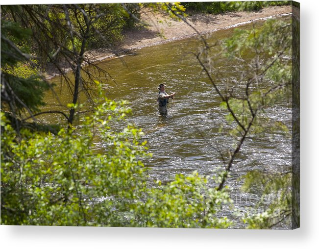Fishing Acrylic Print featuring the photograph Fly Fishing by Louise Magno
