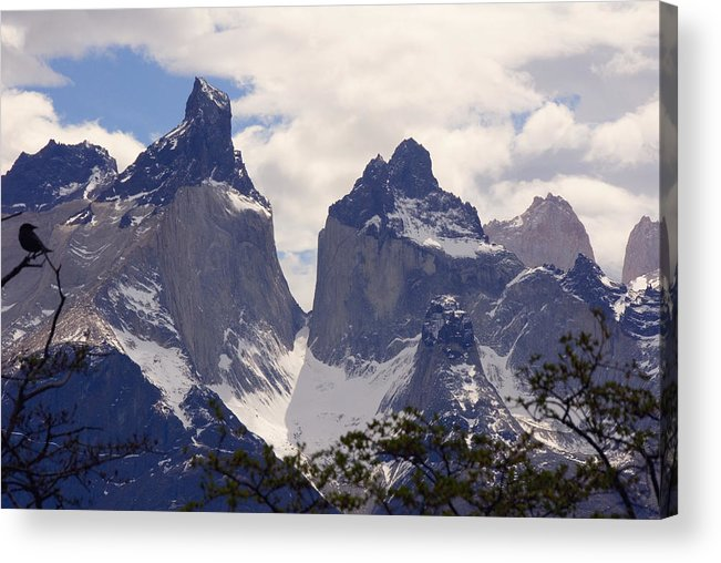 Gray Glacier Acrylic Print featuring the photograph Gray Glacier Chile by Charles Ridgway