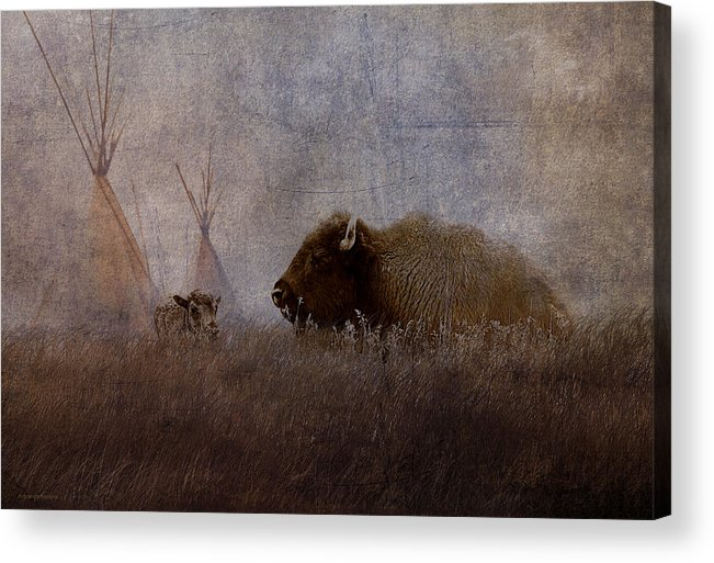 Ron Jones Acrylic Print featuring the photograph Home On The Range by Ron Jones