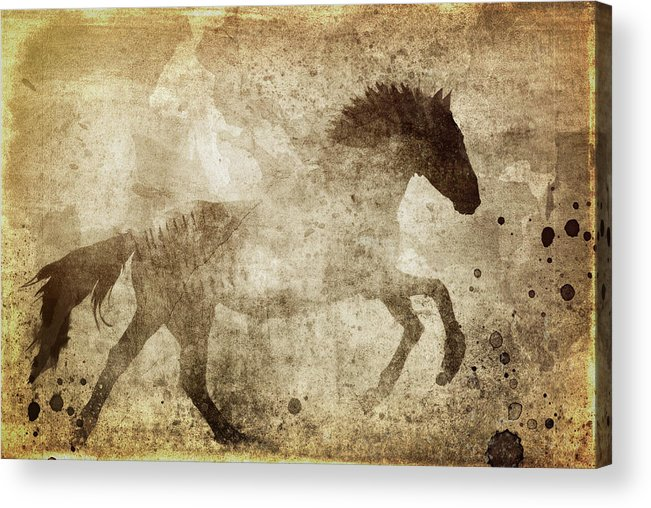 Horse Grunge Acrylic Print featuring the mixed media Horse Grunge by Dan Sproul