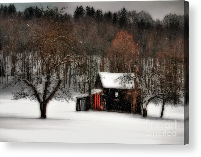 Winter Acrylic Print featuring the photograph In Winter by Lois Bryan