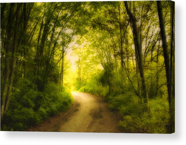 Back Roads Acrylic Print featuring the photograph Into The Light by Diane Smith
