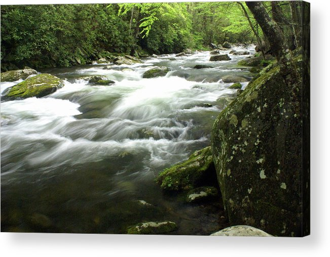 Little River Acrylic Print featuring the photograph Little River 3 by Marty Koch