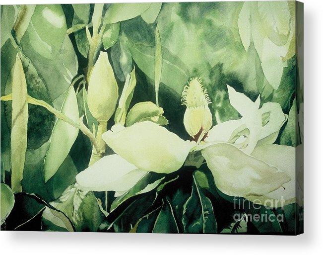 Magnolias Acrylic Print featuring the painting Magnolium Opus by Elizabeth Carr