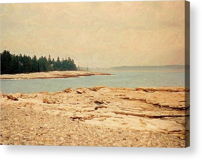 Maine In Summer Acrylic Print featuring the photograph Maine Summer by Desiree Paquette