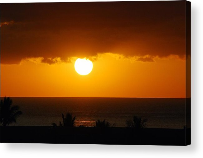 Acrylic Print featuring the photograph Maui Gold by JK Photography