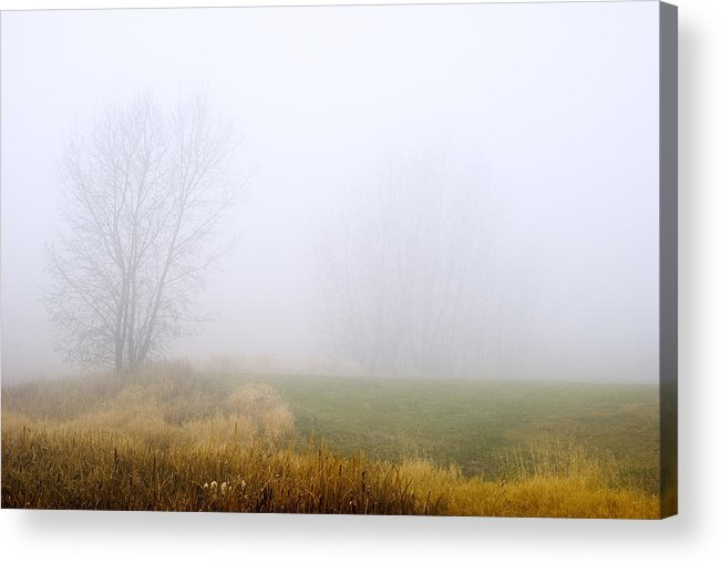 Mcgowan Park Acrylic Print featuring the photograph Mountain Dew by Peter Olsen
