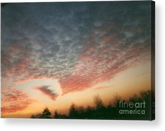 Landscape Acrylic Print featuring the photograph Natures Palette by Stephen King