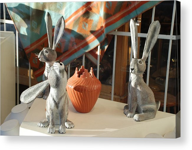 Rabbits Acrylic Print featuring the photograph New Mexico Rabbits by Rob Hans