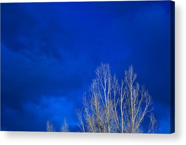 Night Acrylic Print featuring the photograph Night Sky by Steve Gadomski