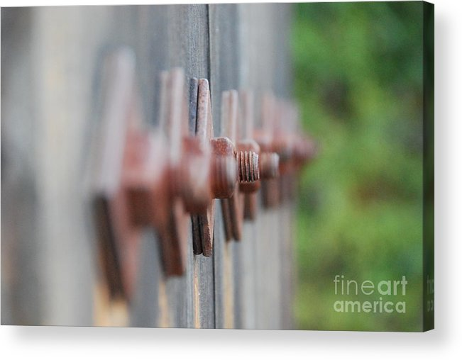 Nuts And Bolts Acrylic Print featuring the photograph Nuts And Bolts by Lori Leigh