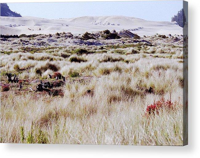 Oregon Dunes National Recreation Area Acrylic Print featuring the photograph Oregon Dunes 6 by Eike Kistenmacher